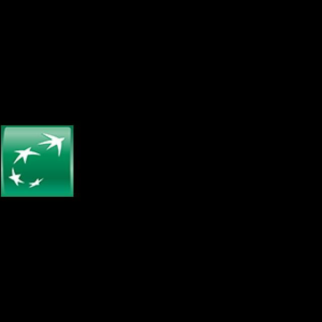 logo mnp Logo